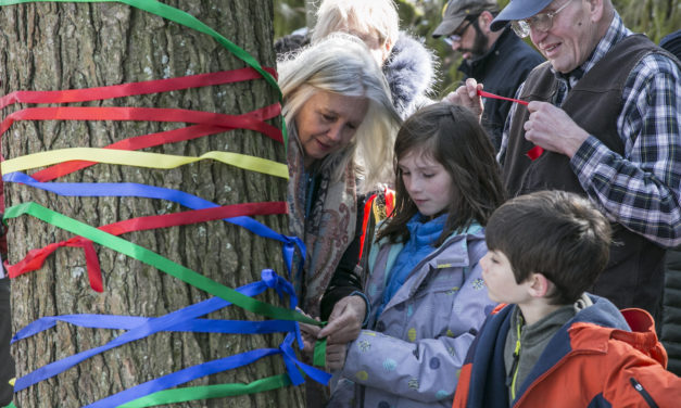 For a Tree: A Call to Ceremony by Rani Findlay