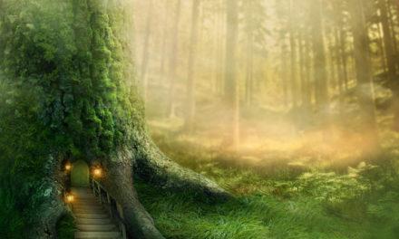 Leaving Neverland, by Samantha Watson